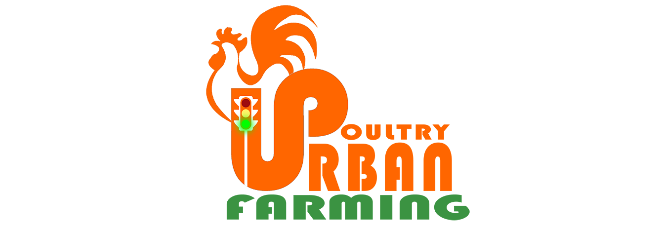 urban poultry_Header